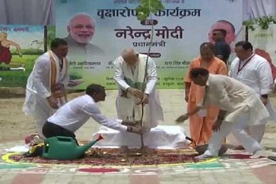 PM Narendra Modi to plant saplings at Anand Kanan vatika