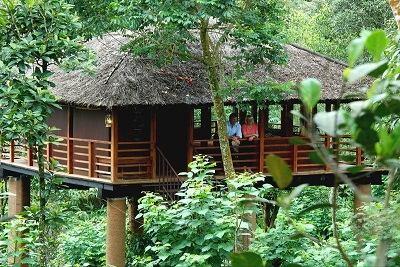 Kerala Honeymoon Package: Munnar, Thekkady, Alleppey - 5 Nights and 6 Days