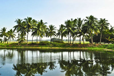 Odisha Family Holidays Package with Cuttack Sightseeing, India