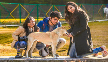 Pet Friendly Tour Packages in Varanasi