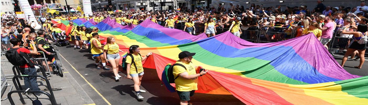 LGBT  Rainbow Flag closet celebrations SC Verdict